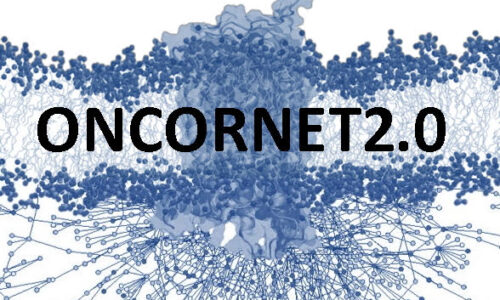 4 Million euros for next ITN research project ONCORNET2.0